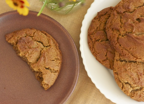 Ginger Molasses Cookies | A Sweet Spoonful