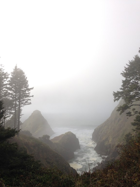 Heceta Head, OR-2013-12-22 13.11.36