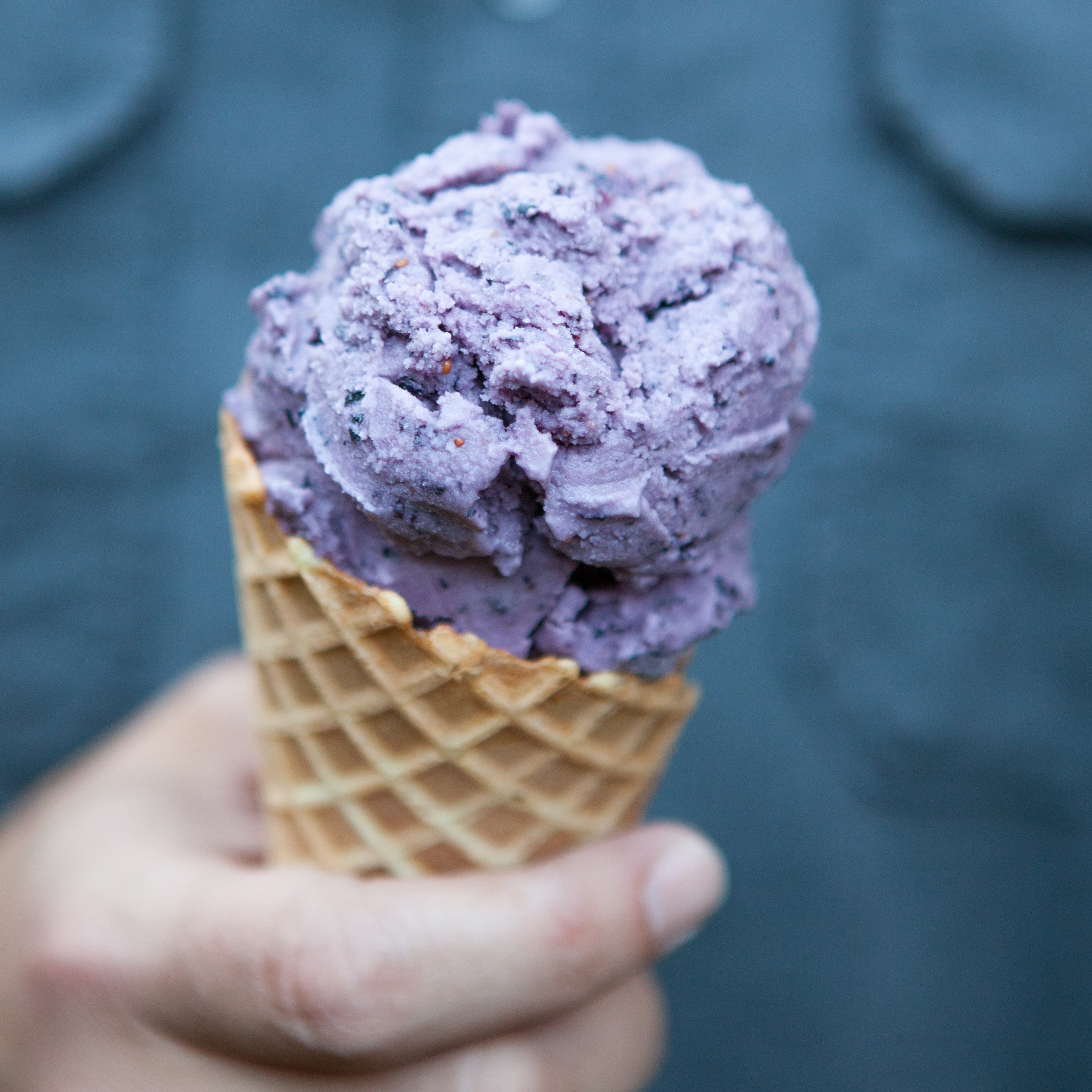 Fresh Blueberry Ice Cream (Dairy Free) | A Sweet Spoonful
