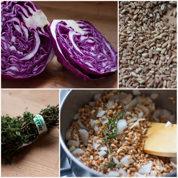 Farro and Cabbage